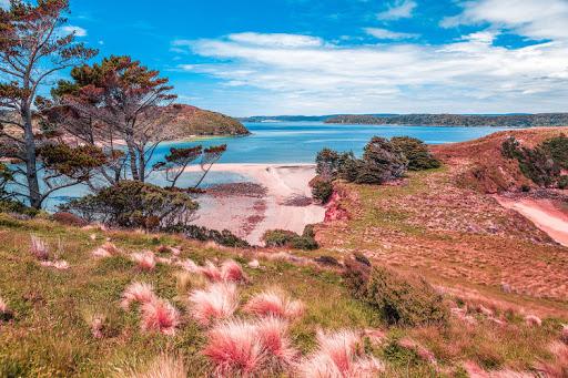 เกาะ Stewart